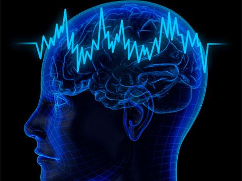 cerebro150513